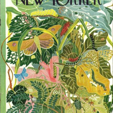 A work of art on the cover of The New Yorker, June 23 1945
